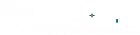 Michailidis Shoes and Mood Logo